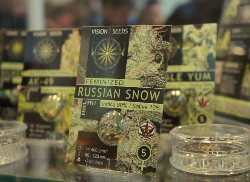 Cannafest-2013-russian-snow