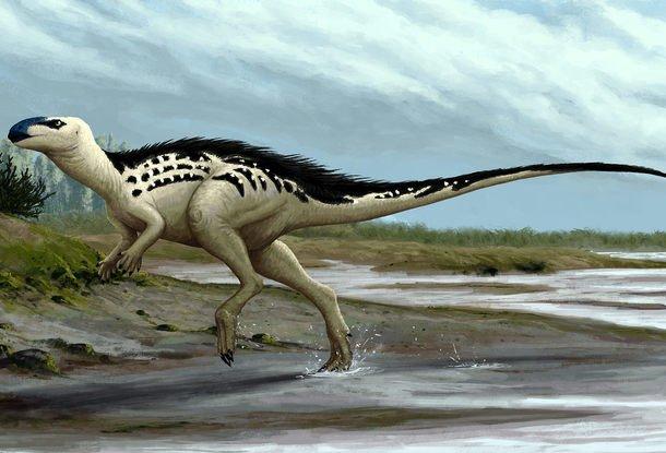 ВЧехии открыли новый вид динозавров