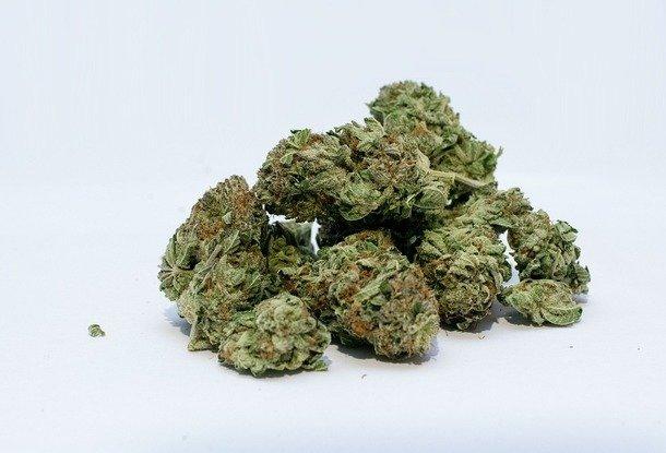 Автобус из конопли какой свет нужен марихуане