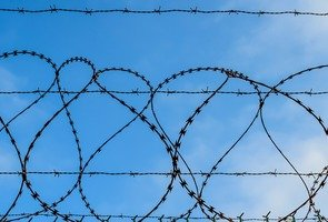 Barbed-wire-3209941_960_720