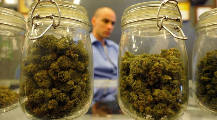 Марихуану чехия семена марихуаны как вырастить